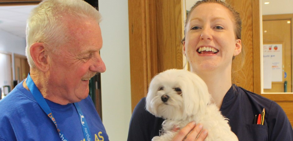 Dying Matters Week: Gozo the therapy dog